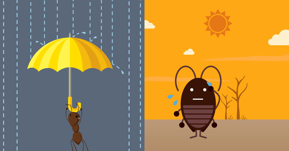 Weather and its Impact on Pests