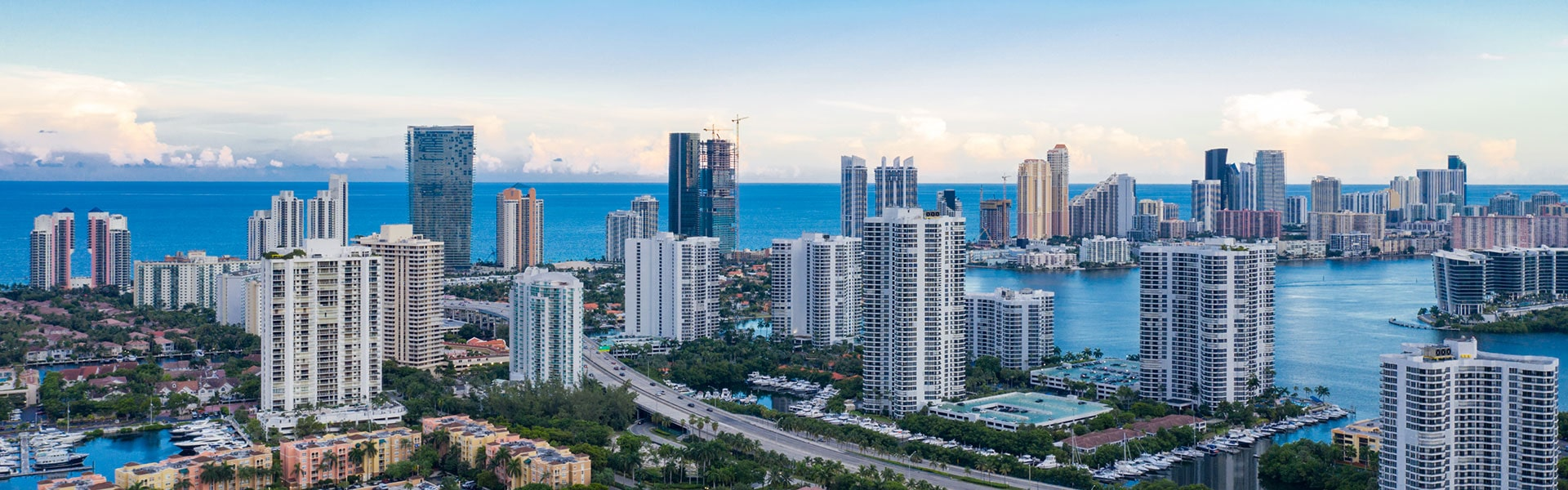 The city of Aventura in South Florida is home to a variety of pests.