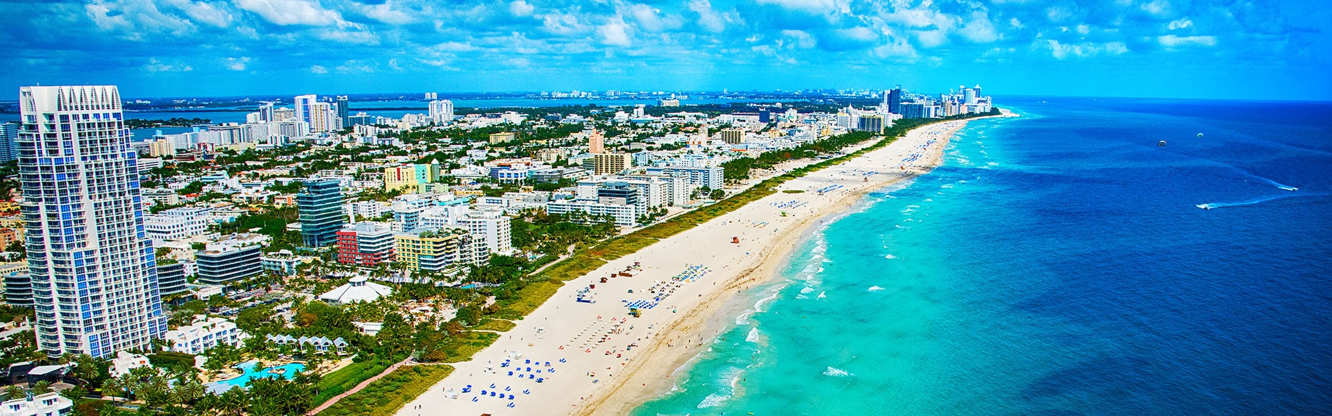 The city of Miami Beach in South Florida is home to a variety of pests.