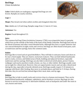 Bed Bug Pest Guide