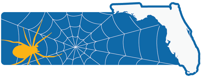 Florida Spider Removal Services