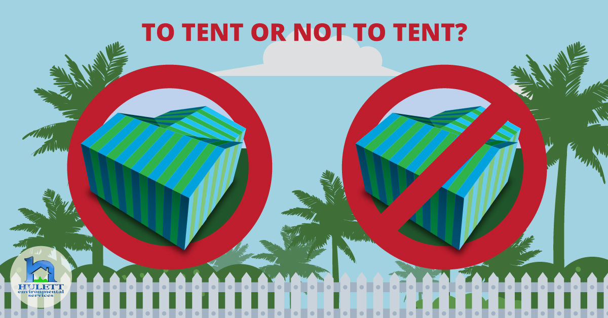 To Tent or Not To Tent?