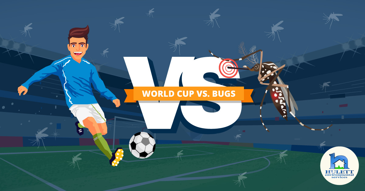 World Cup vs. Bugs