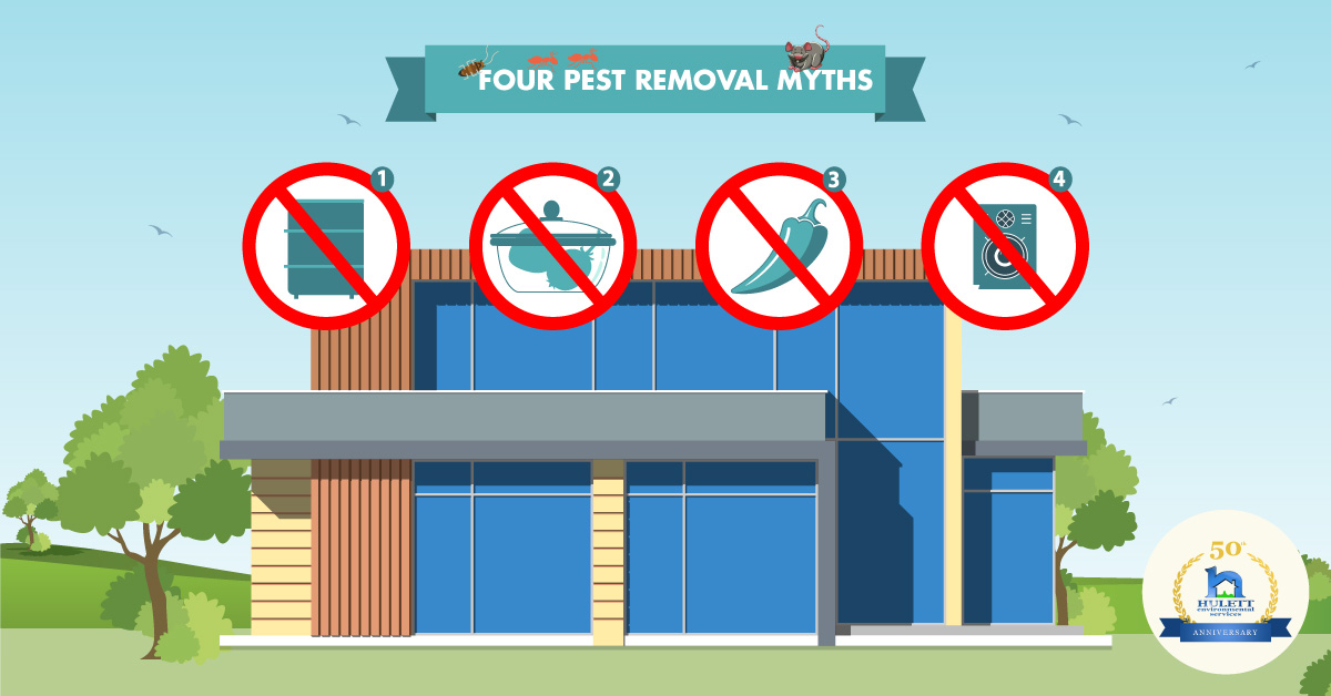 Revealing the Truth Behind Four Pest Removal Myths