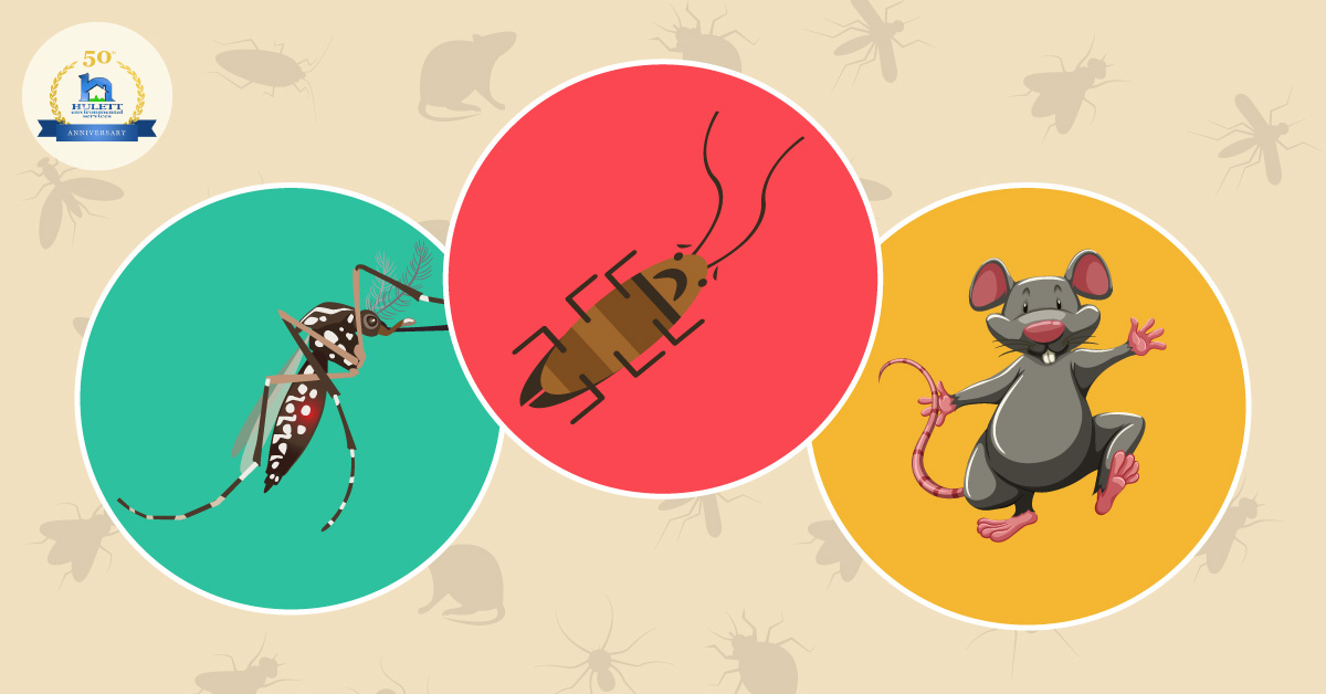 Mosquito, Cockroach and Rodent Populations Expected to Spike